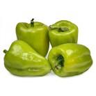 Перец Импортный Зеленый